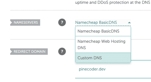"Select ""Custom DNS"" from the dropdown"